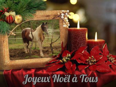 Tanka et ces Copains Vous souhaite de Joyeuses Fêtes et un Immense Merci à tout Ceux qui nous Aide. Des Gros Bisous